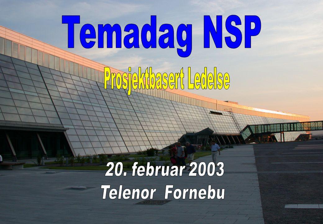 NSP - Prosjektbasert ledelse 1