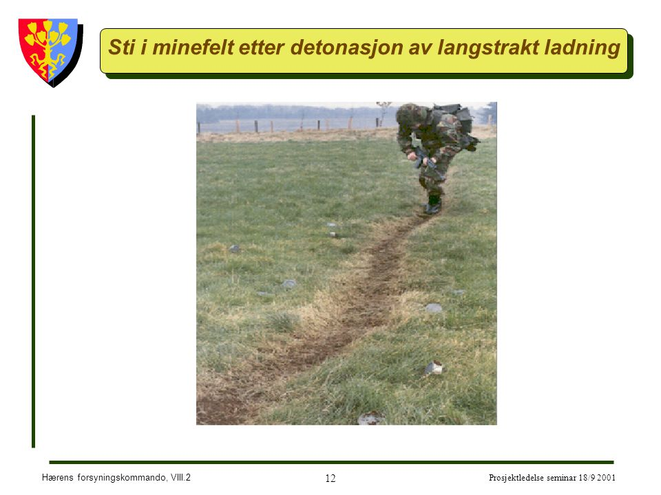 Hærens forsyningskommando, VIII.2 12 Prosjektledelse seminar 18/9 2001 Sti i minefelt etter detonasjon av langstrakt ladning