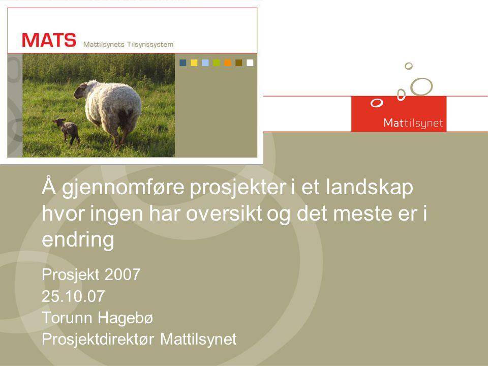 Å gjennomføre prosjekter i et landskap hvor ingen har oversikt og det meste er i endring Prosjekt 2007 25.10.07 Torunn Hagebø Prosjektdirektør Mattils