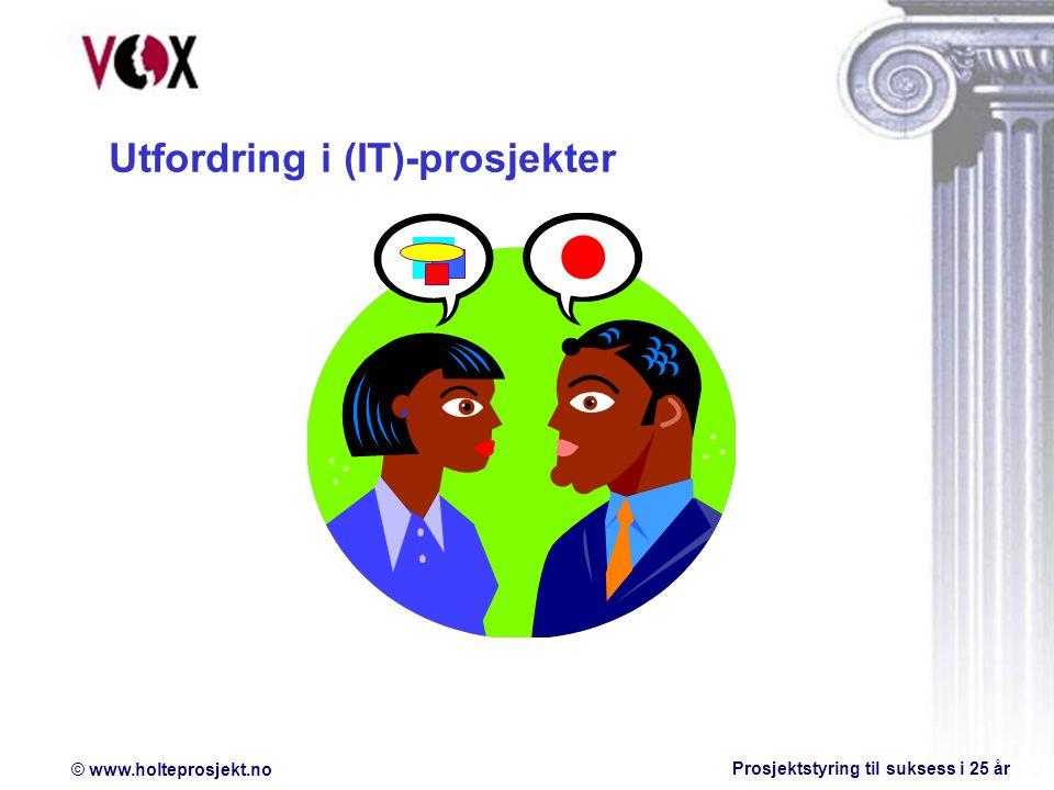 © www.holteprosjekt.no Prosjektstyring til suksess i 25 år Utfordring i (IT)-prosjekter