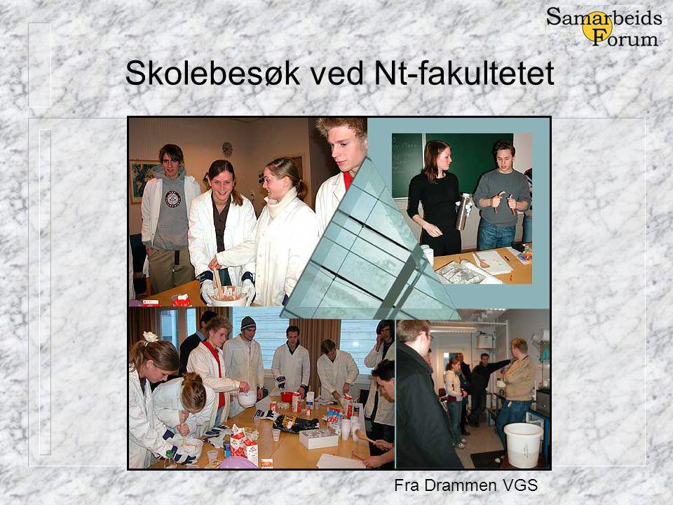 Skolebesøk ved Nt-fakultetet Fra Drammen VGS
