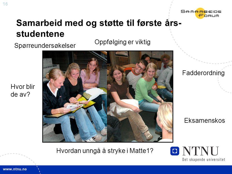 16 Samarbeid med og støtte til første års- studentene Spørreundersøkelser Fadderordning Oppfølging er viktig Eksamenskos Hvordan unngå å stryke i Matte1.