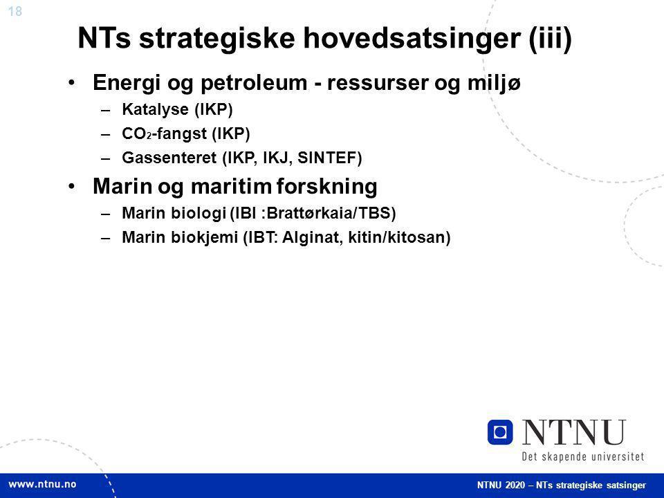 18 Energi og petroleum - ressurser og miljø –Katalyse (IKP) –CO 2 -fangst (IKP) –Gassenteret (IKP, IKJ, SINTEF) Marin og maritim forskning –Marin biol