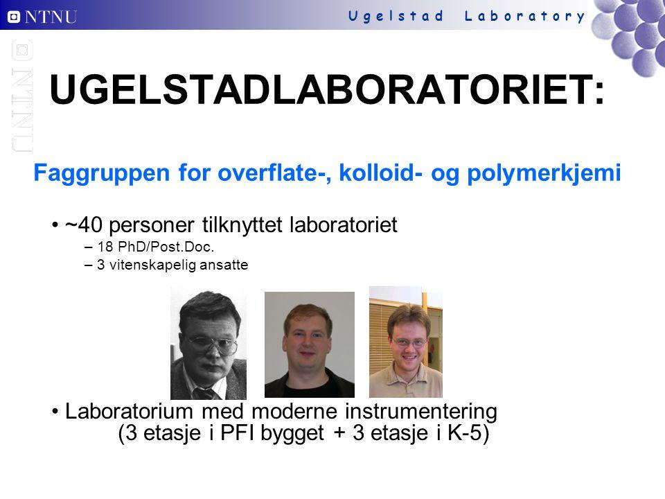 U g e l s t a d L a b o r a t o r y UGELSTADLABORATORIET: Faggruppen for overflate-, kolloid- og polymerkjemi ~40 personer tilknyttet laboratoriet – 18 PhD/Post.Doc.