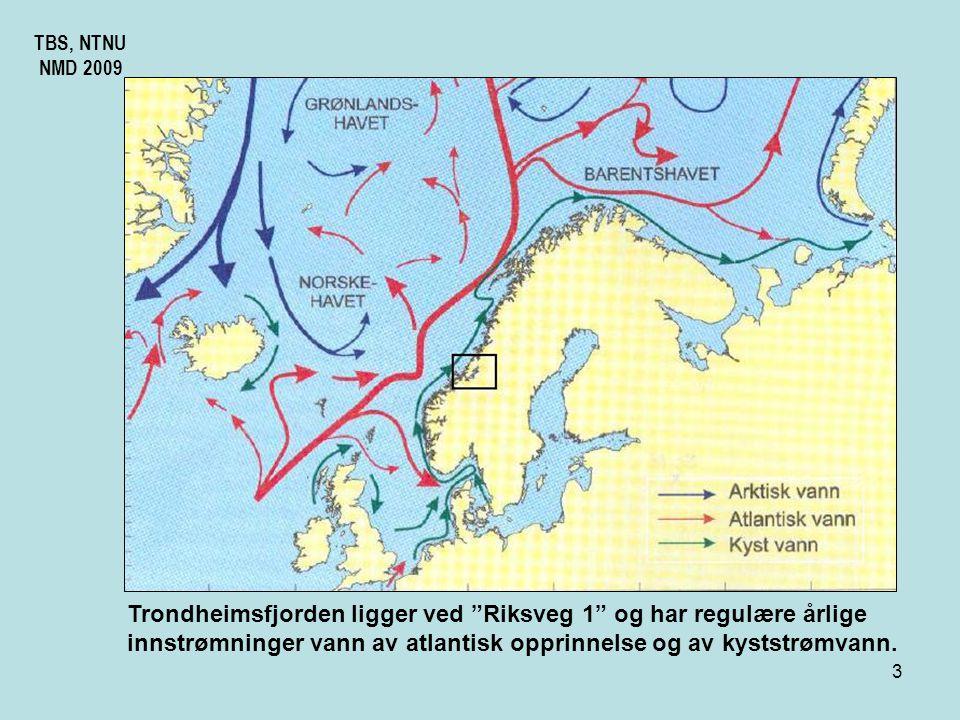 2 TBS, NTNU NMD 2009 Trondheimsfjorden er Norges tredje lengste og syvende dypeste fjord. Fra Steinkjær til utløpet er det 13 mil. Den har også den st