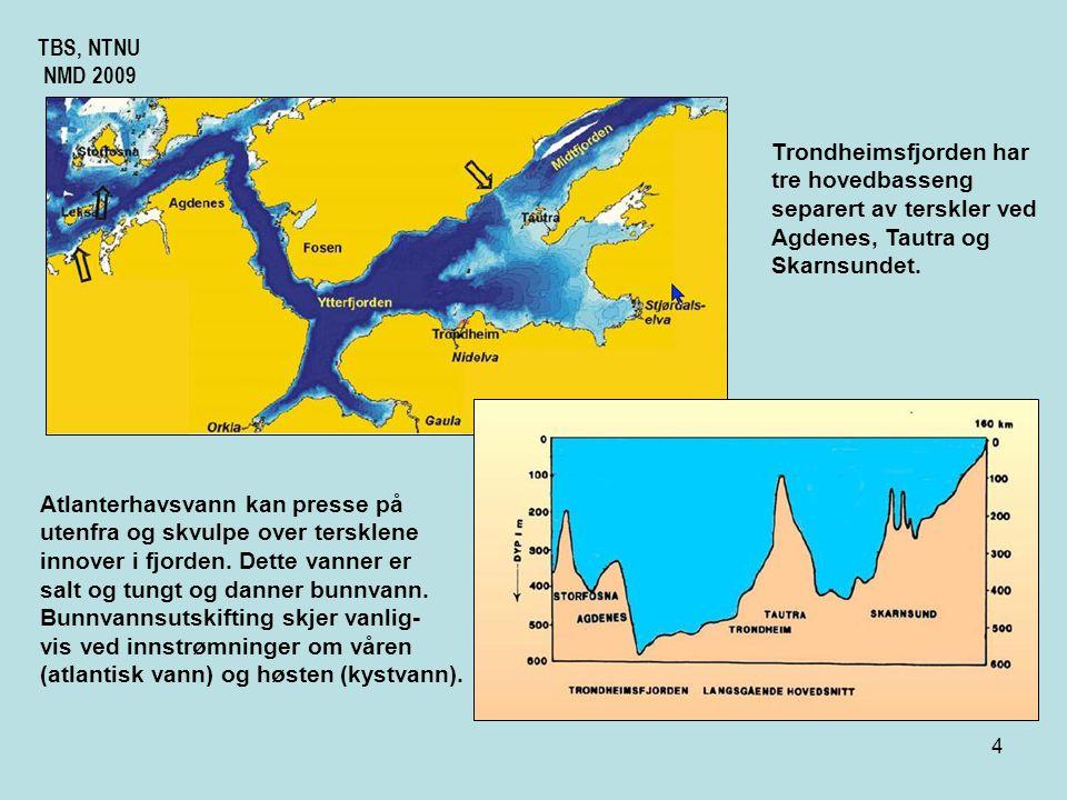 """3 TBS, NTNU NMD 2009 Trondheimsfjorden ligger ved """"Riksveg 1"""" og har regulære årlige innstrømninger vann av atlantisk opprinnelse og av kyststrømvann."""