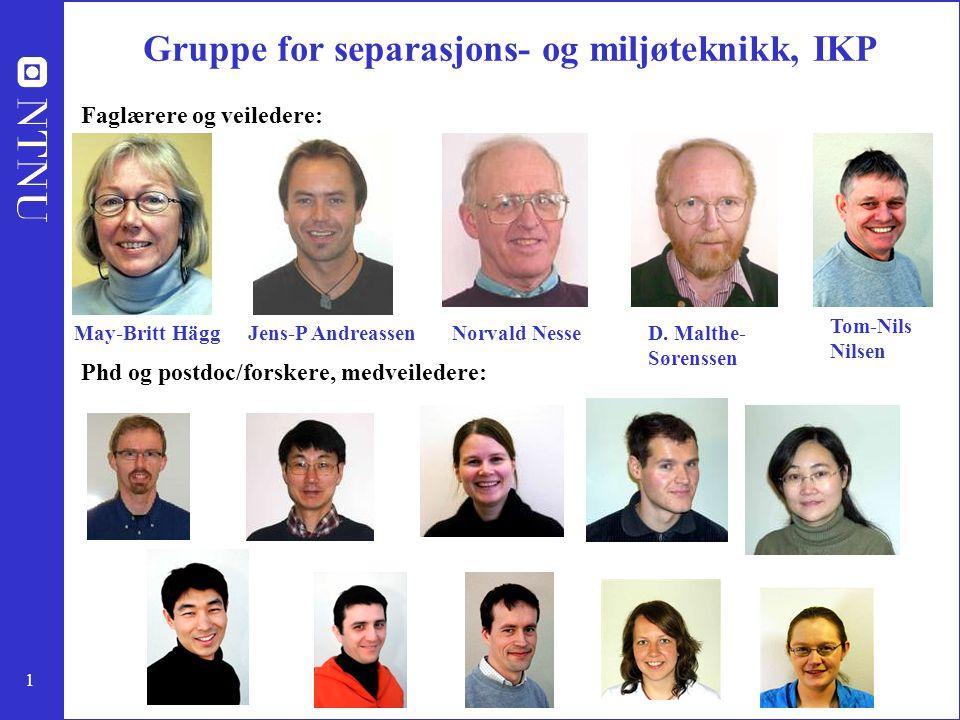 1 Gruppe for separasjons- og miljøteknikk, IKP May-Britt HäggJens-P AndreassenNorvald NesseD. Malthe- Sørenssen Faglærere og veiledere: Phd og postdoc