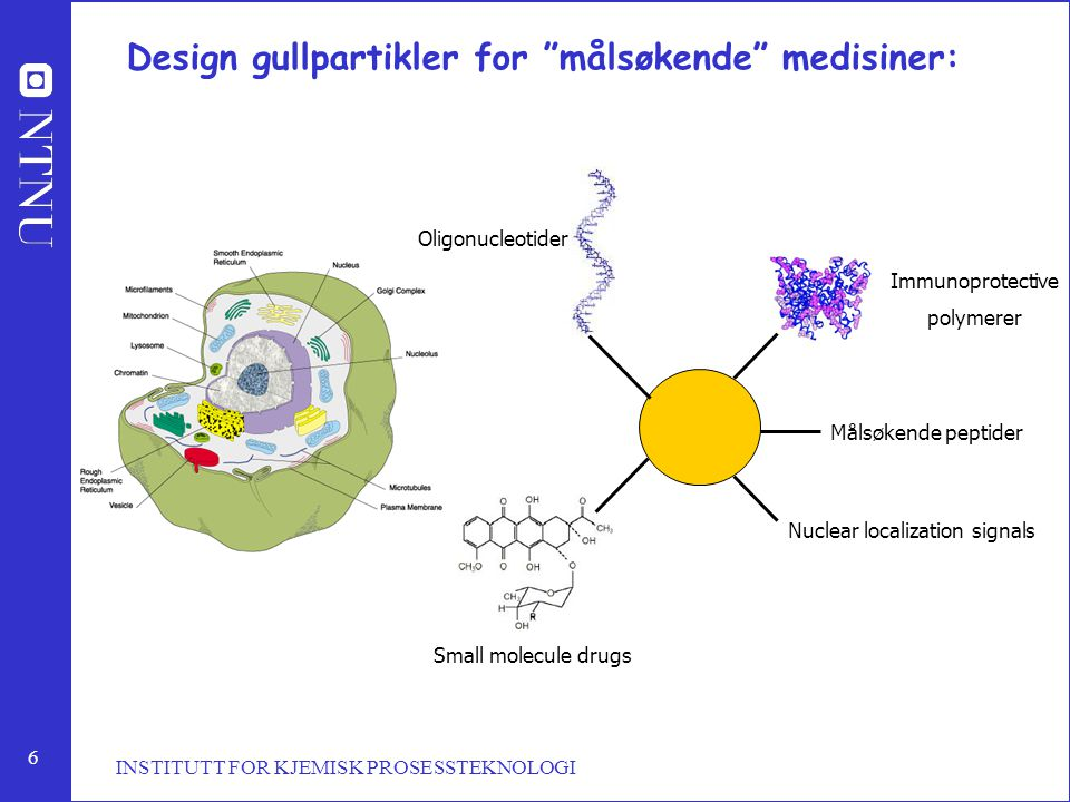 6 INSTITUTT FOR KJEMISK PROSESSTEKNOLOGI Design gullpartikler for målsøkende medisiner: Immunoprotective polymerer Målsøkende peptider Nuclear localization signals Small molecule drugs Oligonucleotider