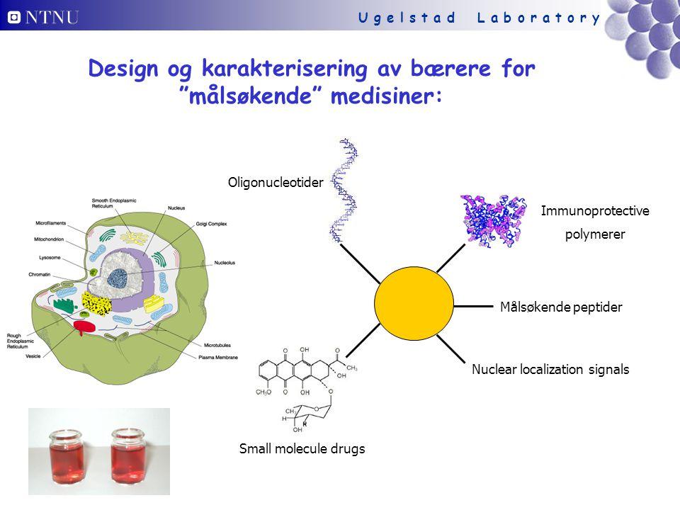 U g e l s t a d L a b o r a t o r y Design og karakterisering av bærere for målsøkende medisiner: Immunoprotective polymerer Målsøkende peptider Nuclear localization signals Small molecule drugs Oligonucleotider