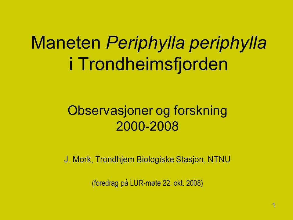 1 Maneten Periphylla periphylla i Trondheimsfjorden Observasjoner og forskning 2000-2008 J. Mork, Trondhjem Biologiske Stasjon, NTNU (foredrag på LUR-