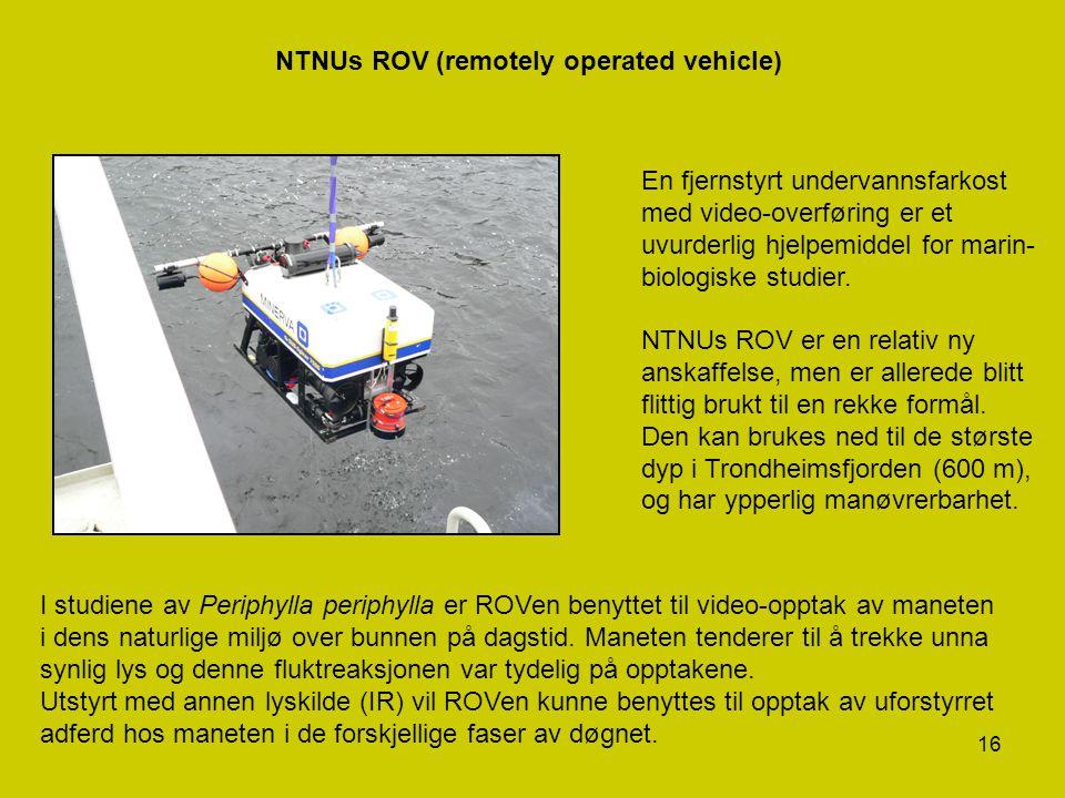 16 NTNUs ROV (remotely operated vehicle) En fjernstyrt undervannsfarkost med video-overføring er et uvurderlig hjelpemiddel for marin- biologiske stud