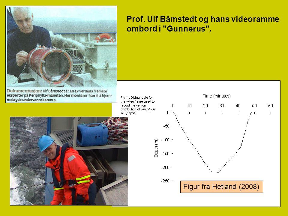 31 Prof. Ulf Båmstedt og hans videoramme ombord i
