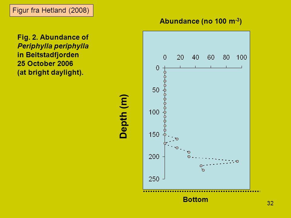 32 Abundance (no 100 m -3 ) Depth (m) Bottom Fig. 2. Abundance of Periphylla periphylla in Beitstadfjorden 25 October 2006 (at bright daylight). Figur
