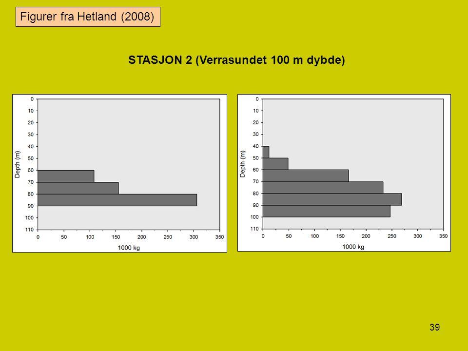39 STASJON 2 (Verrasundet 100 m dybde) Figurer fra Hetland (2008)