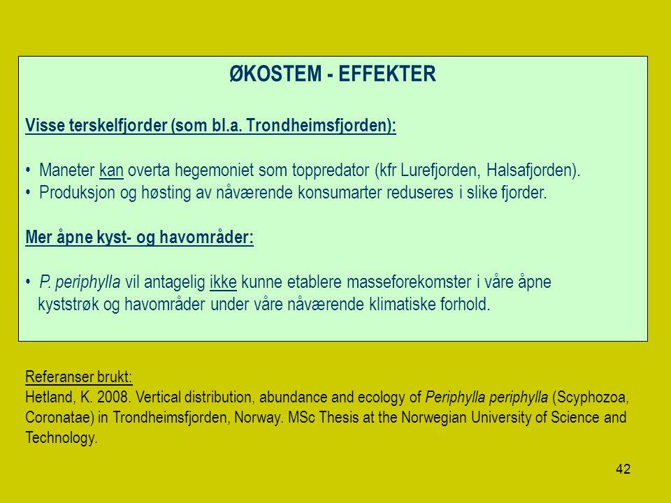 42 ØKOSTEM - EFFEKTER Visse terskelfjorder (som bl.a. Trondheimsfjorden): Maneter kan overta hegemoniet som toppredator (kfr Lurefjorden, Halsafjorden