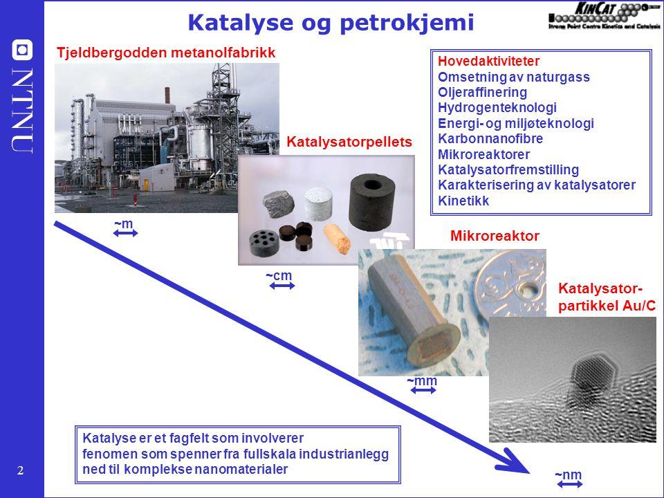 2 ~m ~cm ~mm ~nm Tjeldbergodden metanolfabrikk Katalysatorpellets Mikroreaktor Katalysator- partikkel Au/C Katalyse og petrokjemi Katalyse er et fagfelt som involverer fenomen som spenner fra fullskala industrianlegg ned til komplekse nanomaterialer Hovedaktiviteter Omsetning av naturgass Oljeraffinering Hydrogenteknologi Energi- og miljøteknologi Karbonnanofibre Mikroreaktorer Katalysatorfremstilling Karakterisering av katalysatorer Kinetikk