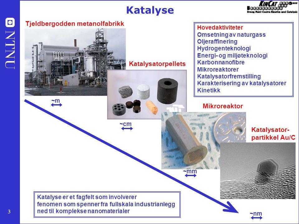 3 ~m ~cm ~mm ~nm Tjeldbergodden metanolfabrikk Katalysatorpellets Mikroreaktor Katalysator- partikkel Au/C Katalyse Katalyse er et fagfelt som involverer fenomen som spenner fra fullskala industrianlegg ned til komplekse nanomaterialer Hovedaktiviteter Omsetning av naturgass Oljeraffinering Hydrogenteknologi Energi- og miljøteknologi Karbonnanofibre Mikroreaktorer Katalysatorfremstilling Karakterisering av katalysatorer Kinetikk