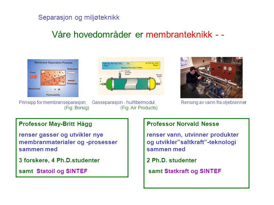 Separasjon og miljøteknikk Våre hovedområder er membranteknikk - - Rensing av vann fra oljebrønner Professor May-Britt Hägg renser gasser og utvikler nye membranmaterialer og -prosesser sammen med 3 forskere, 4 Ph.D.studenter samt Statoil og SINTEF Professor Norvald Nesse renser vann, utvinner produkter og utvikler saltkraft -teknologi sammen med 2 Ph.D.