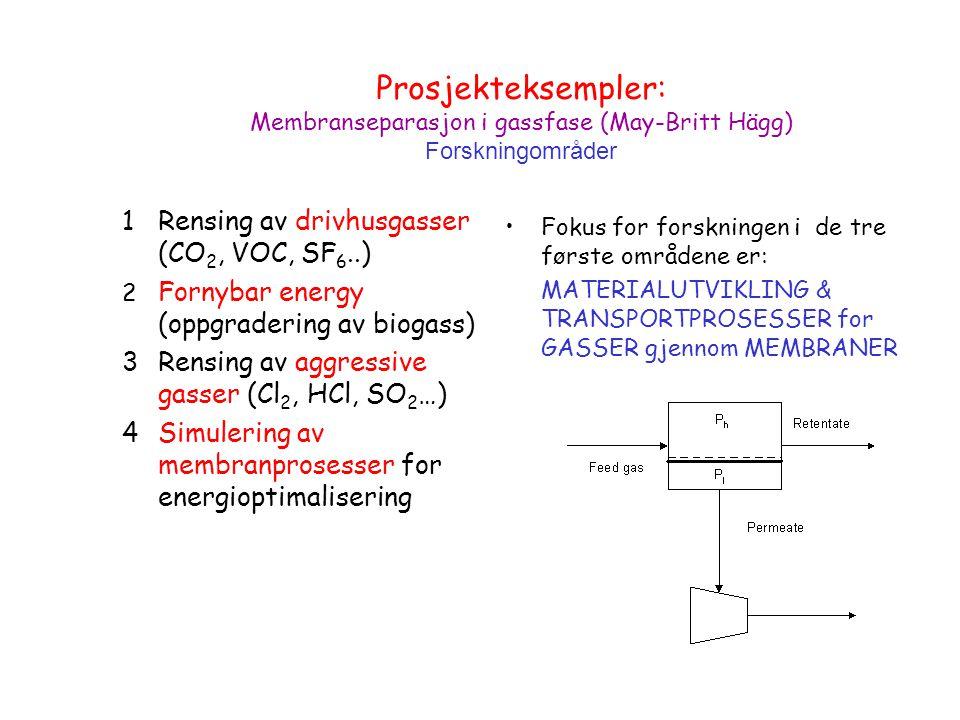 Prosjekteksempler: Membranseparasjon i gassfase (May-Britt Hägg) Forskningområder 1Rensing av drivhusgasser (CO 2, VOC, SF 6..) 2 Fornybar energy (oppgradering av biogass) 3Rensing av aggressive gasser (Cl 2, HCl, SO 2 …) 4Simulering av membranprosesser for energioptimalisering Fokus for forskningen i de tre første områdene er: MATERIALUTVIKLING & TRANSPORTPROSESSER for GASSER gjennom MEMBRANER