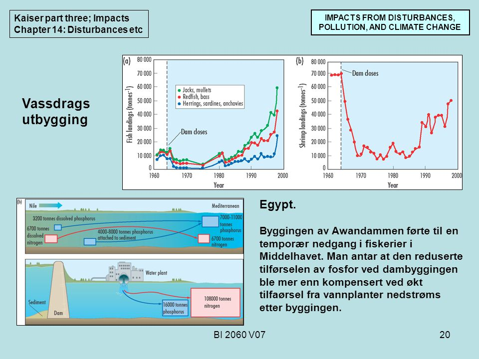 BI 2060 V0720 IMPACTS FROM DISTURBANCES, POLLUTION, AND CLIMATE CHANGE Kaiser part three; Impacts Chapter 14: Disturbances etc Egypt. Byggingen av Awa