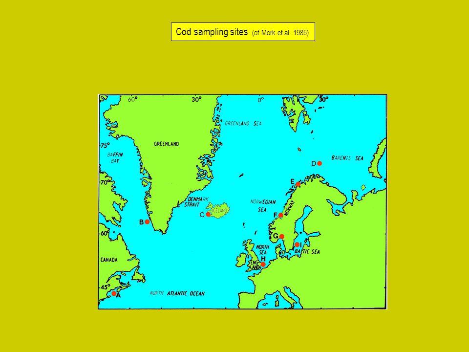 Cod sampling sites (of Mork et al. 1985)