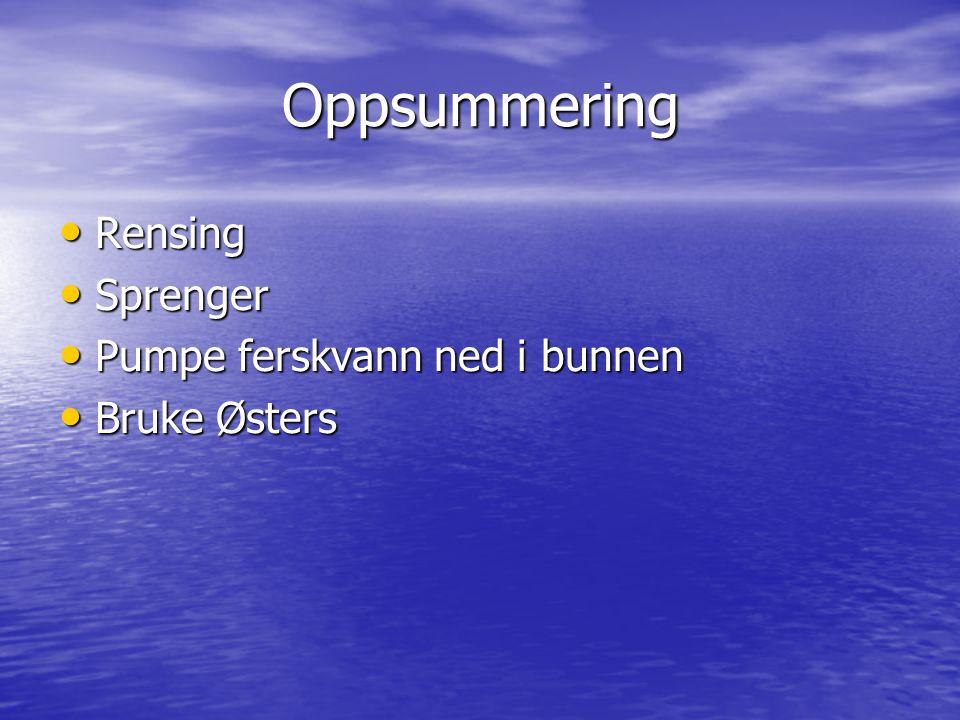 Oppsummering Rensing Rensing Sprenger Sprenger Pumpe ferskvann ned i bunnen Pumpe ferskvann ned i bunnen Bruke Østers Bruke Østers
