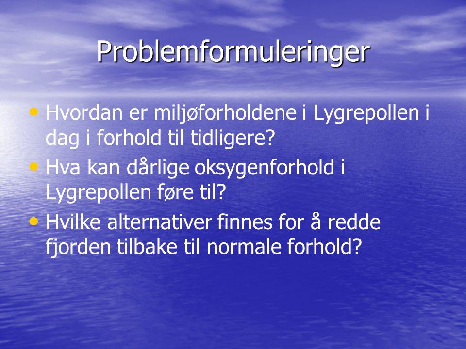 Problemformuleringer Hvordan er miljøforholdene i Lygrepollen i dag i forhold til tidligere? Hva kan dårlige oksygenforhold i Lygrepollen føre til? Hv