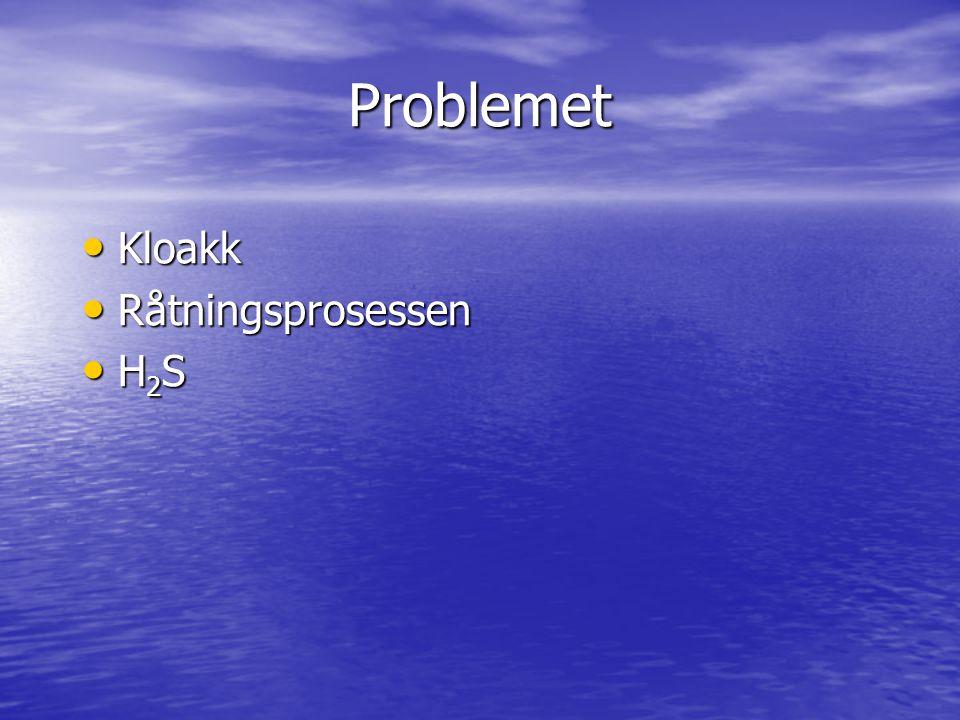 Problemet Kloakk Kloakk Råtningsprosessen Råtningsprosessen H 2 S H 2 S