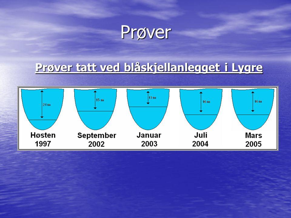 Prøver Prøver tatt ved blåskjellanlegget i Lygre