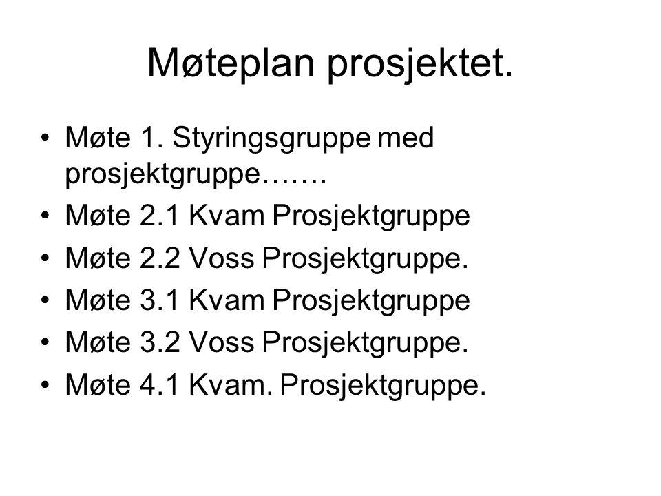 Møteplan prosjektet. Møte 1. Styringsgruppe med prosjektgruppe……. Møte 2.1 Kvam Prosjektgruppe Møte 2.2 Voss Prosjektgruppe. Møte 3.1 Kvam Prosjektgru