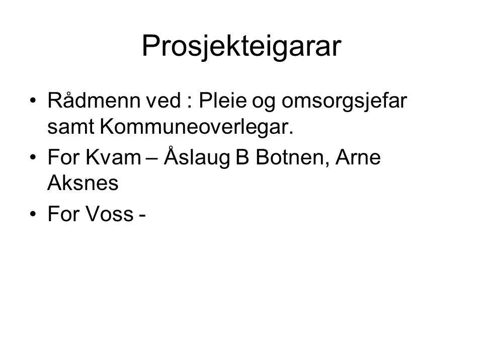 Prosjekteigarar Rådmenn ved : Pleie og omsorgsjefar samt Kommuneoverlegar. For Kvam – Åslaug B Botnen, Arne Aksnes For Voss -