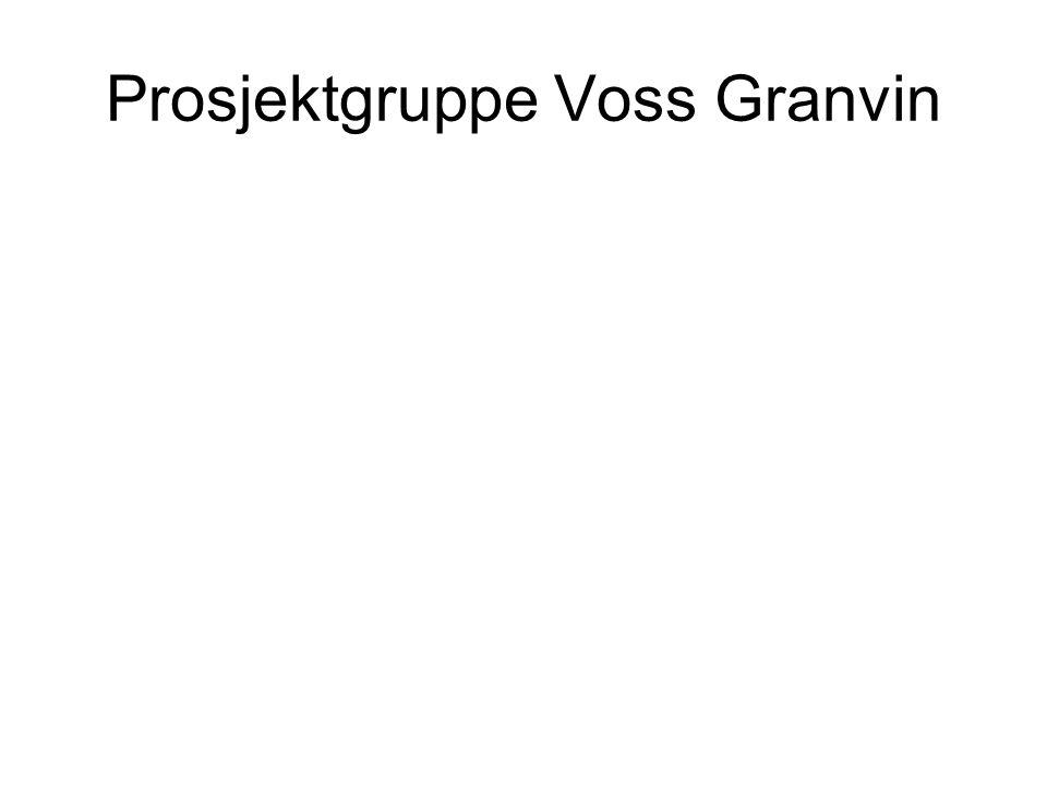 Prosjektgruppe Voss Granvin