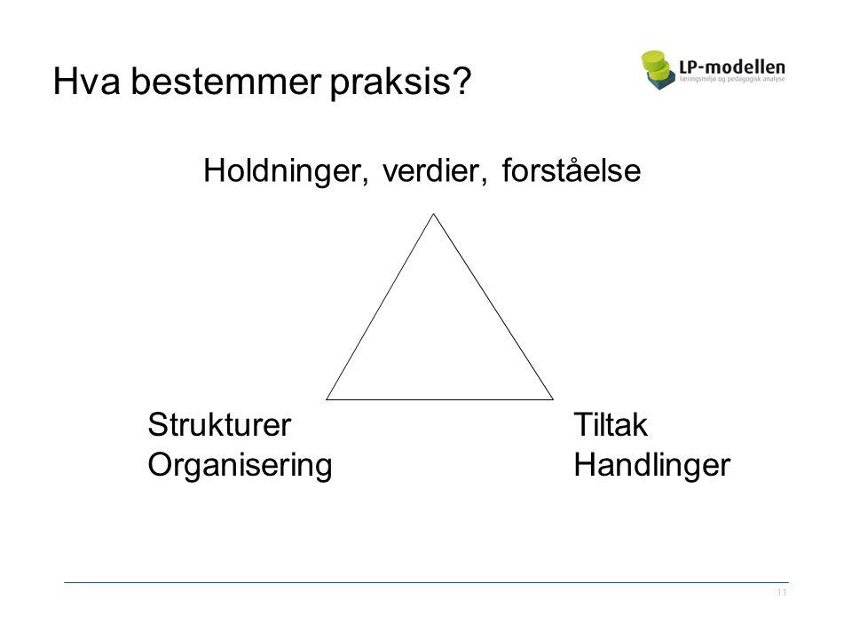 Hva bestemmer praksis Holdninger, verdier, forståelse StrukturerTiltak OrganiseringHandlinger 11