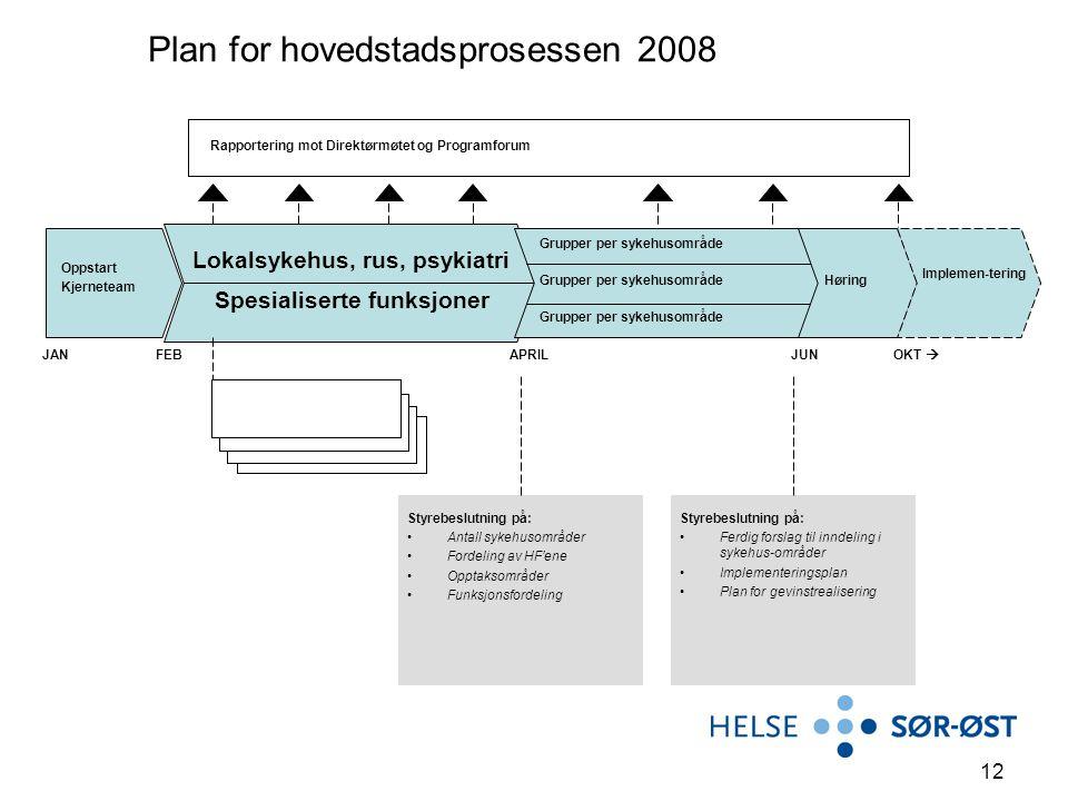 12 Plan for hovedstadsprosessen 2008 Oppstart Kjerneteam Lokalsykehus, rus, psykiatri Grupper per sykehusområde Styrebeslutning på: Antall sykehusområ