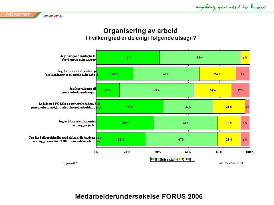 Medarbeiderundersøkelse FORUS 2006 Organisering av arbeid I hvilken grad er du enig i følgende utsagn?