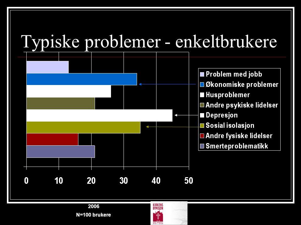 Typiske problemer - enkeltbrukere 2006 N=100 brukere