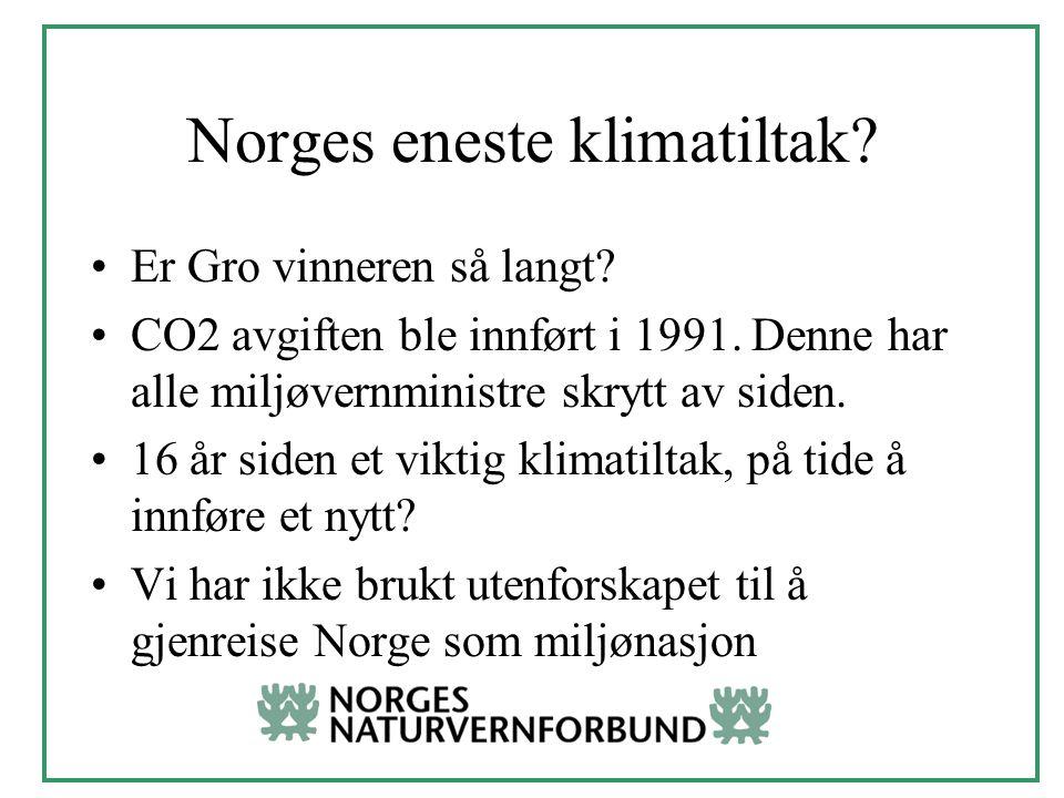 Norges eneste klimatiltak. Er Gro vinneren så langt.