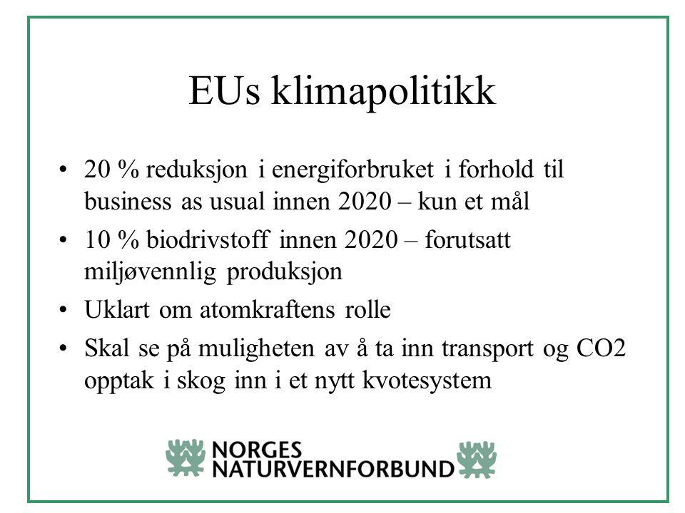 EUs klimapolitikk 20 % reduksjon i energiforbruket i forhold til business as usual innen 2020 – kun et mål 10 % biodrivstoff innen 2020 – forutsatt miljøvennlig produksjon Uklart om atomkraftens rolle Skal se på muligheten av å ta inn transport og CO2 opptak i skog inn i et nytt kvotesystem