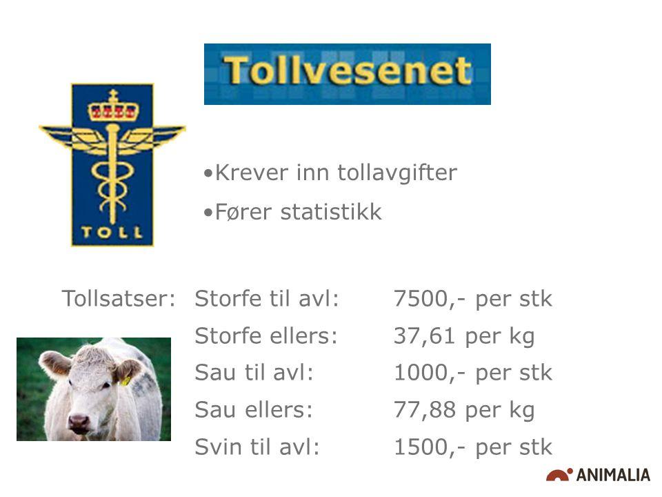 Krever inn tollavgifter Fører statistikk Tollsatser: Storfe til avl: 7500,- per stk Storfe ellers: 37,61 per kg Sau til avl:1000,- per stk Sau ellers:77,88 per kg Svin til avl: 1500,- per stk