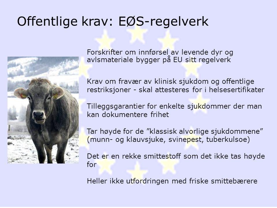 Offentlige krav: EØS-regelverk Forskrifter om innførsel av levende dyr og avlsmateriale bygger på EU sitt regelverk Krav om fravær av klinisk sjukdom