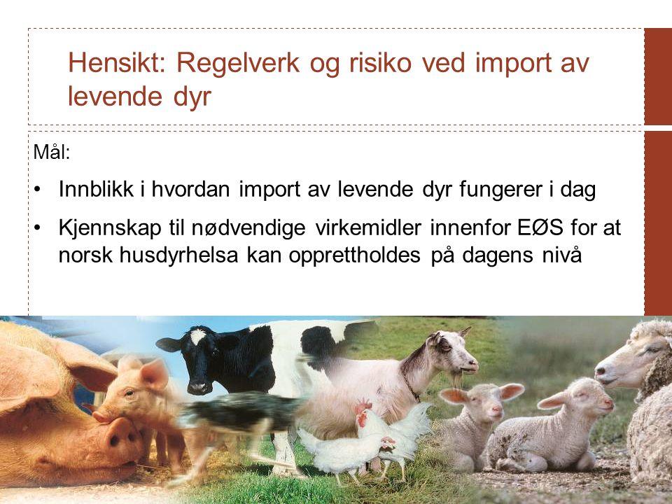 Hensikt: Regelverk og risiko ved import av levende dyr Mål: Innblikk i hvordan import av levende dyr fungerer i dag Kjennskap til nødvendige virkemidler innenfor EØS for at norsk husdyrhelsa kan opprettholdes på dagens nivå