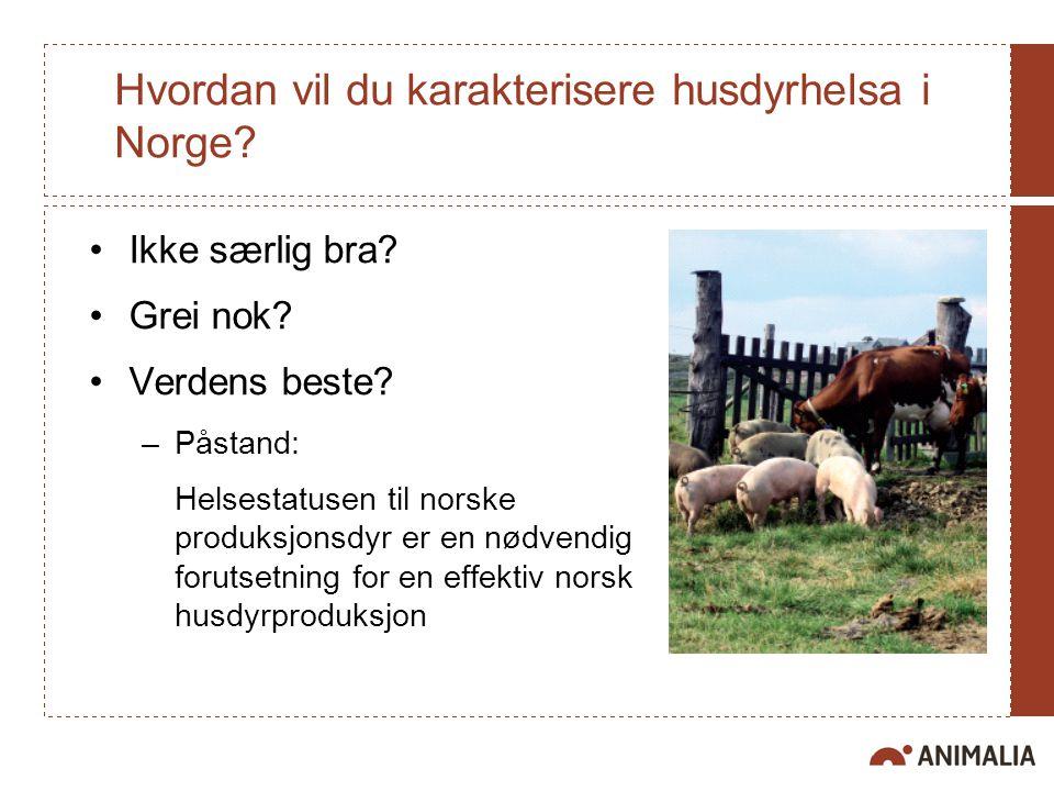 Hvordan vil du karakterisere husdyrhelsa i Norge? Ikke særlig bra? Grei nok? Verdens beste? –Påstand: Helsestatusen til norske produksjonsdyr er en nø