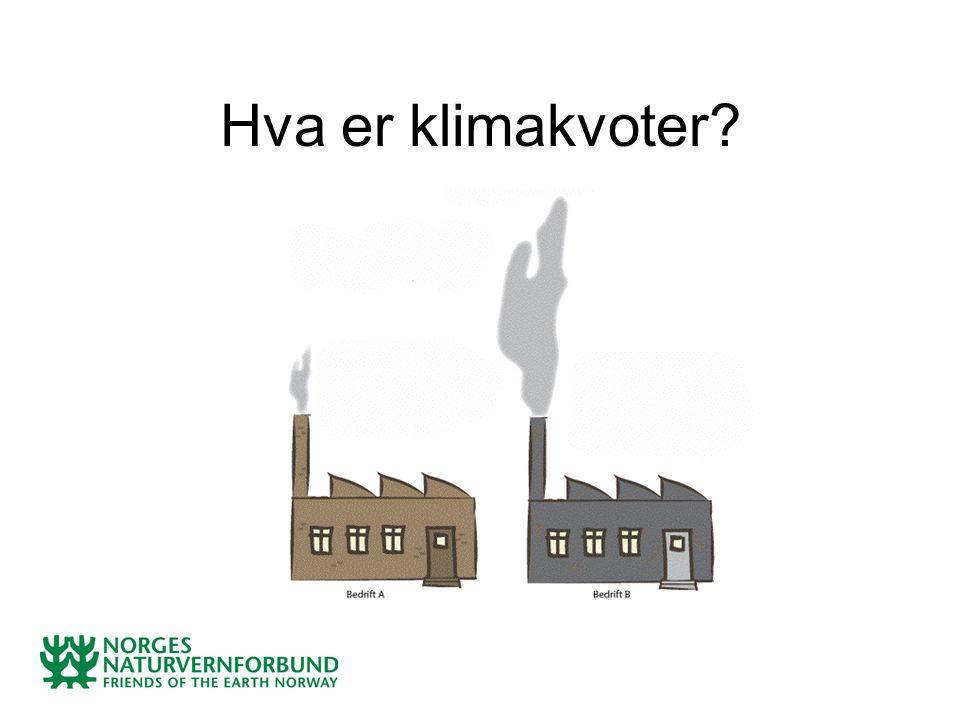 Hva er klimakvoter?