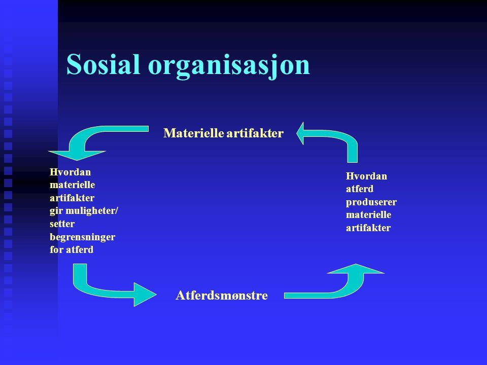 Sosial organisasjon Materielle artifakter Hvordan materielle artifakter gir muligheter/ setter begrensninger for atferd Atferdsmønstre Hvordan atferd