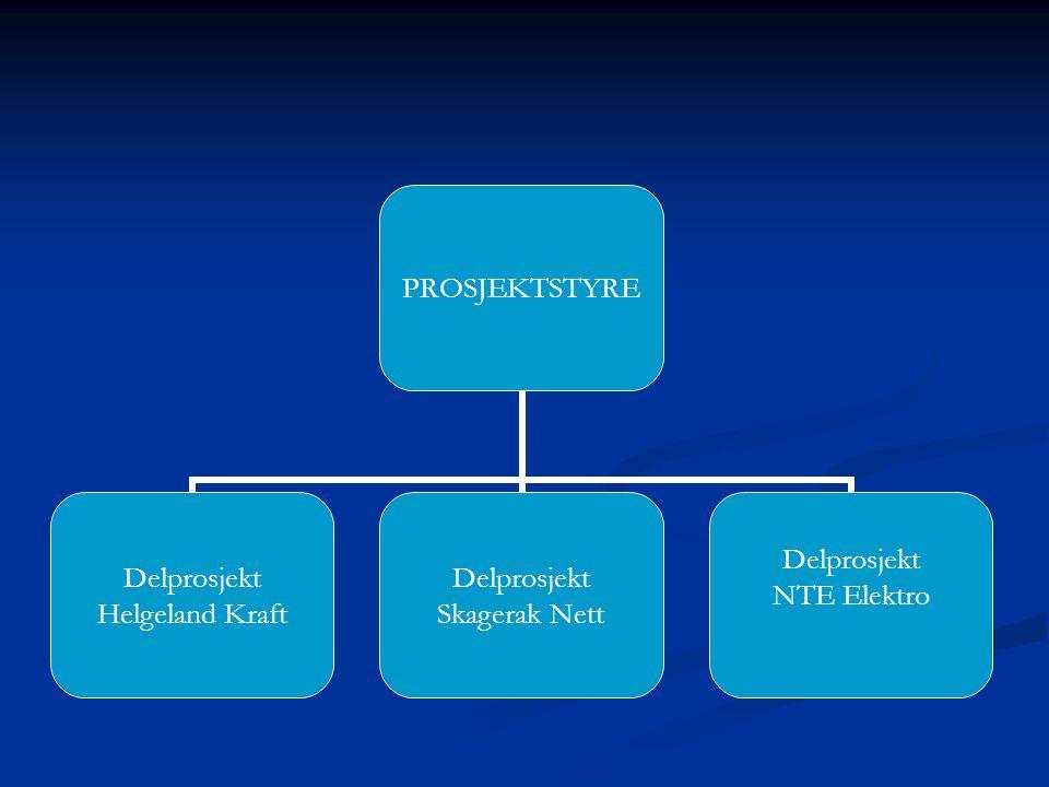 PROSJEKTSTYRE Delprosjekt Helgeland Kraft Delprosjekt Skagerak Nett Delprosjekt NTE Elektro