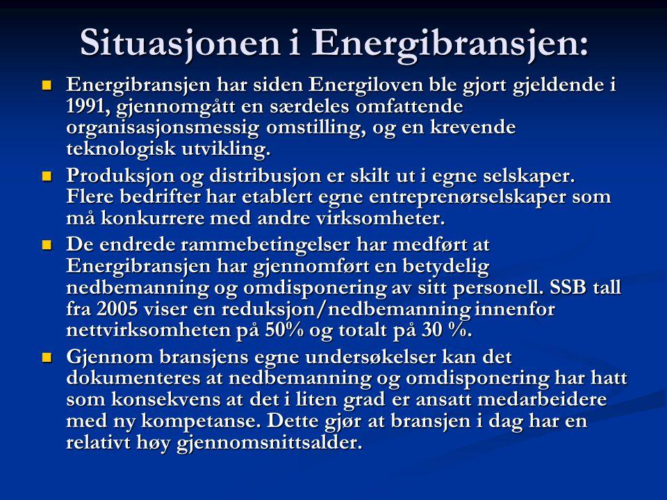 Situasjonen i Energibransjen: Energibransjen har siden Energiloven ble gjort gjeldende i 1991, gjennomgått en særdeles omfattende organisasjonsmessig omstilling, og en krevende teknologisk utvikling.