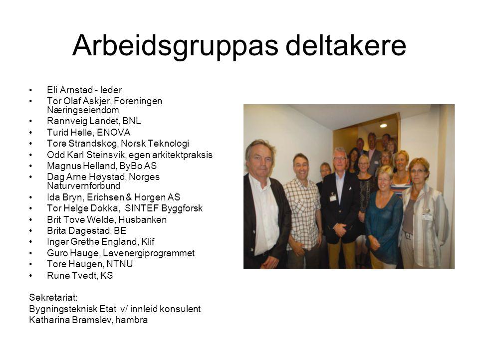 Arbeidsgruppas deltakere Eli Arnstad - leder Tor Olaf Askjer, Foreningen Næringseiendom Rannveig Landet, BNL Turid Helle, ENOVA Tore Strandskog, Norsk