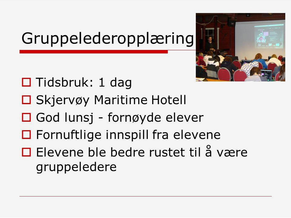 Gruppelederopplæring  Tidsbruk: 1 dag  Skjervøy Maritime Hotell  God lunsj - fornøyde elever  Fornuftlige innspill fra elevene  Elevene ble bedre rustet til å være gruppeledere