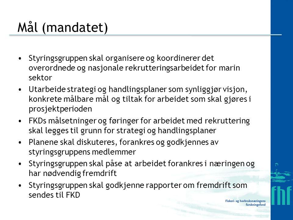 Mål (mandatet) Styringsgruppen skal organisere og koordinerer det overordnede og nasjonale rekrutteringsarbeidet for marin sektor Utarbeide strategi og handlingsplaner som synliggjør visjon, konkrete målbare mål og tiltak for arbeidet som skal gjøres i prosjektperioden FKDs målsetninger og føringer for arbeidet med rekruttering skal legges til grunn for strategi og handlingsplaner Planene skal diskuteres, forankres og godkjennes av styringsgruppens medlemmer Styringsgruppen skal påse at arbeidet forankres i næringen og har nødvendig fremdrift Styringsgruppen skal godkjenne rapporter om fremdrift som sendes til FKD