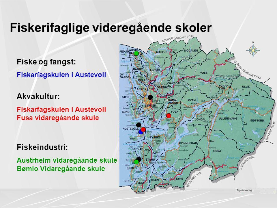Fiskerifaglige videregående skoler Fiskeindustri: Austrheim vidaregåande skule Bømlo Vidaregåande skule Fiske og fangst: Fiskarfagskulen i Austevoll Akvakultur: Fiskarfagskulen i Austevoll Fusa vidaregåande skule